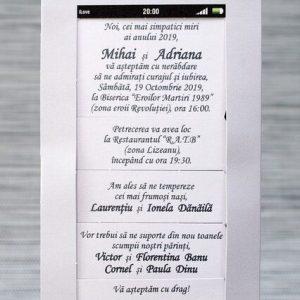 Invitatii de nunta 1144