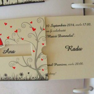 invitatie cod 5484