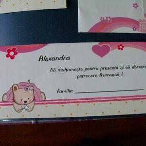 plic bani roz botez fetita