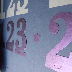 detaliu numar mov