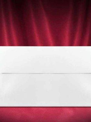 plic-invitatie-nunta-Z030