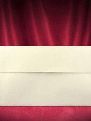 plic-invitatie-nunta-Z031