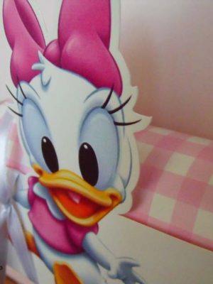 invitatie-cufar-duck-Daisy-104 (13)