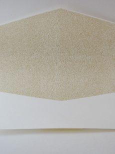 Interior plic P16