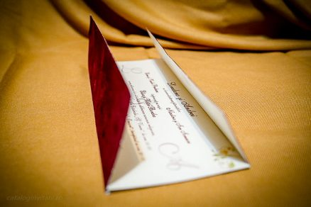 Detaliu invitatie intredeschisa