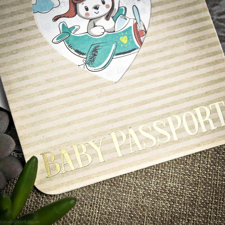 Invitatie Botez Pasaport 15605 Cataloginvitatii
