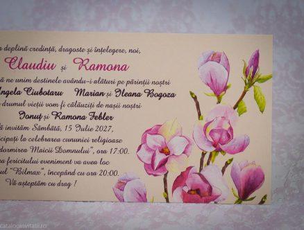 detaliu flori de magnolie