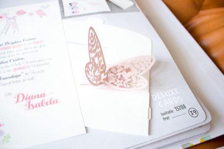 Detaliu Fluture