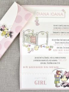 plan departat Invitatie Minnie 15718