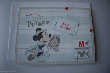 detaliu din catalog Little Prince Mickey 3D 15702