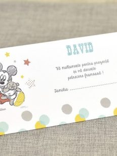 Detaliu plan departat Mapa bani Mickey the Mouse 5721