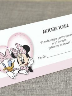detaliu departat Mapa bani minnie and daisy 5722