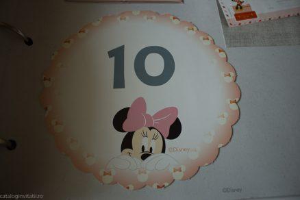 detaliu catalog numar masa Minnie 1701