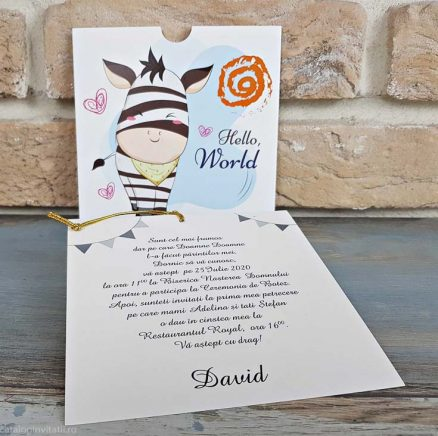 detaliu ansamblu invitatie carton text carton suport 804