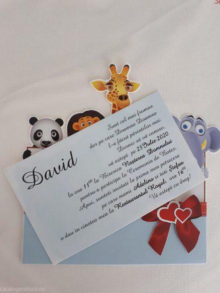detaliu text din catalog Invitatie botez 8034