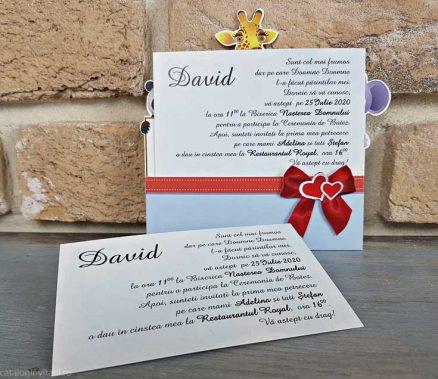 detaliu text plan departat Invitatie botez 8034