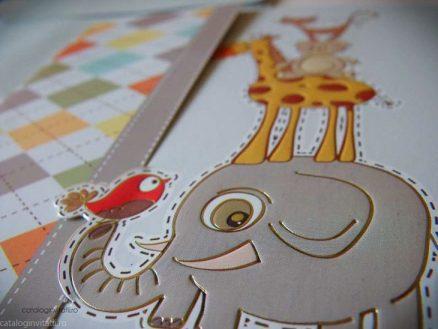 detaliu macro elefantel