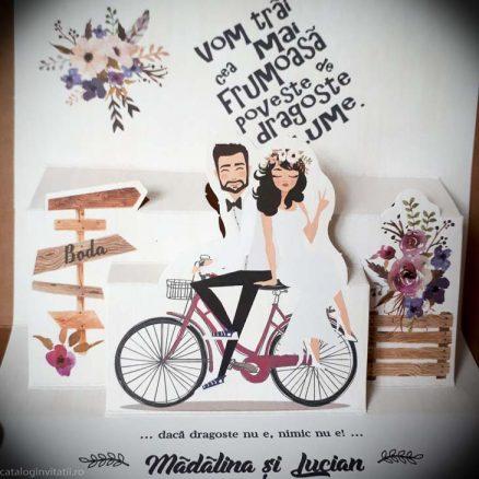 detaliu apropiat imagine miri pe bicicleta 39829
