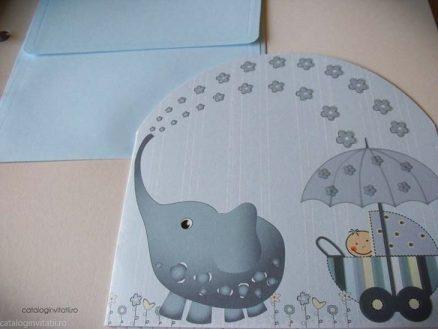 detaliu elefant trompa ridicata 126
