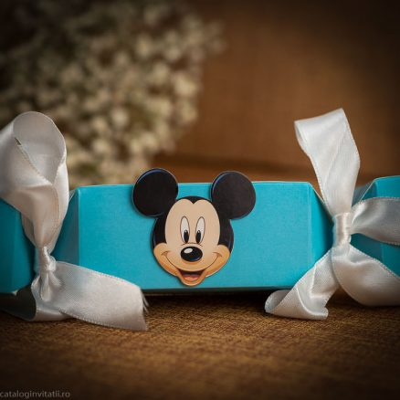 detaliu apropiat mickey mouse 151