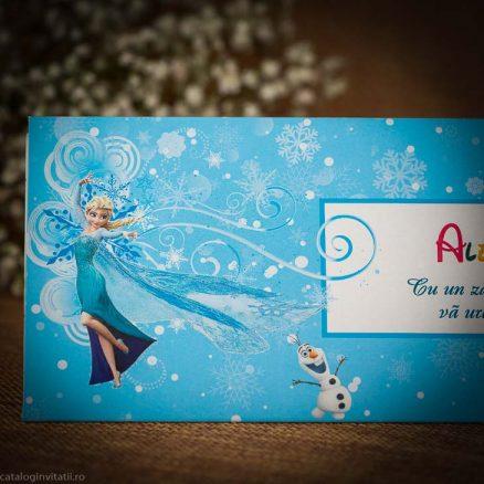 detaliu apropiat personaj Elsa 146
