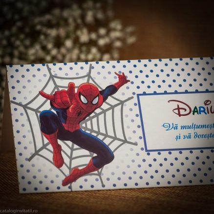 detaliu personaj spider man 145