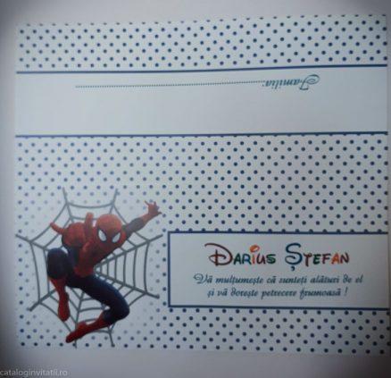 detaliu din catalog spider man 145