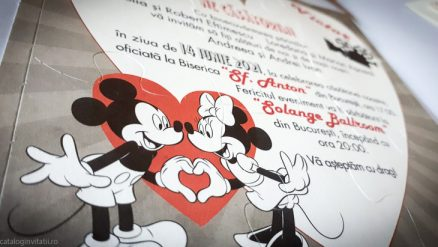 detaliu macro minnie si mickey invit 39738